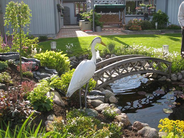 Trädgård trädgård damm : TrädgÃ¥rdsvandring | Lyckeby TrädgÃ¥rdsförening | Sida 2