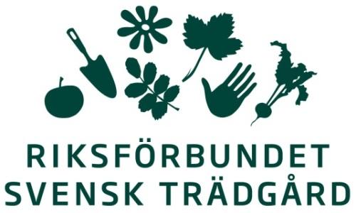 Logo RST